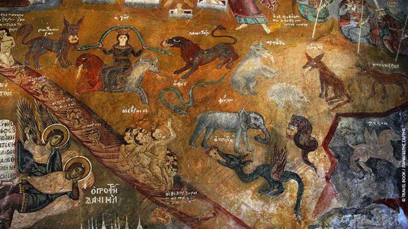 εικόνες ζώων αγία παρασκευή σαρδίνια